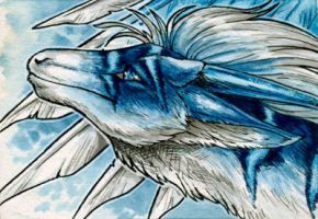 ACEO for Dragons225 by Natoli