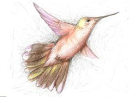hummingbird prismacolor by Almiux19