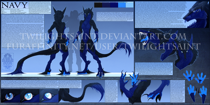 Personal - Navy Reference Sheet by TwilightSaint