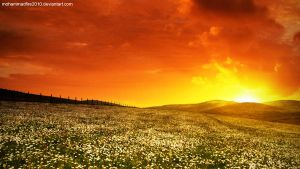 Background 2 by Mohammad-GFX