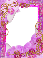 frame Charm of Orchids PNG by Melissa-tm