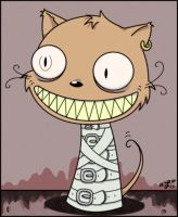 awful mad kitty by LaughingSquid