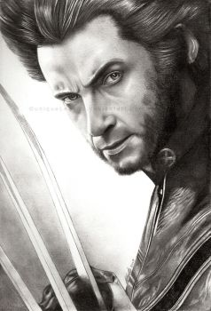 Wolverine by EternaLegend