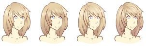 Hair Shading Styles by raru-tan