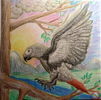 grey parrot oil crayon by shadowhatesomochao