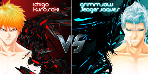 ichigo-vs-grimmjow battle sign by luquitasabee