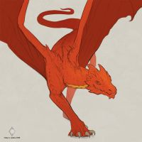 Dragon sketch by CindyAA