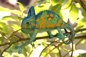 Custom Chameleon - Camille 2 by quirkandbramble