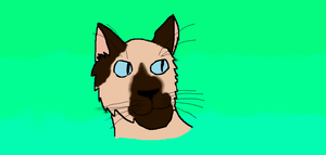 The Siamese Cat by Sooty123