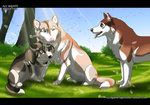 World is wider than a kennel by Aquene-lupetta