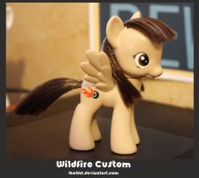 Wildfire Custom by thelint