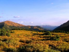 Morning in the High Country by AKFrostwriter