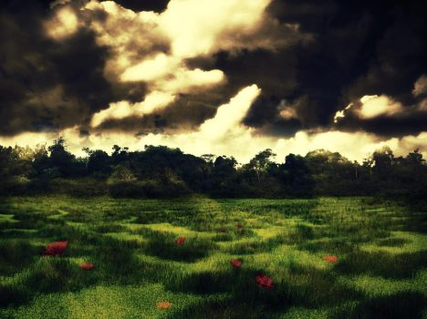 Desolate Meadow by Life-For-Sale