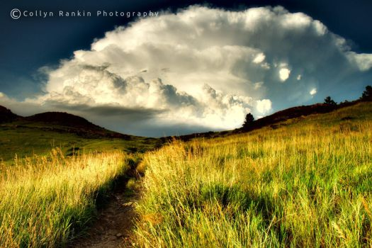 Path to heaven by collyn89