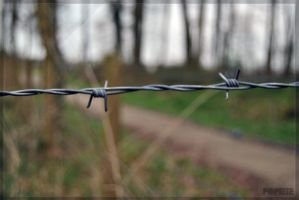 Barbed Wire by p0piete