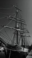 Tall Ship by woodland-walker