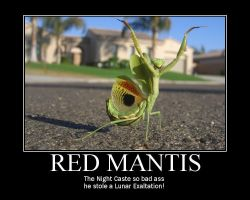 Red Mantis by tomthefanboy