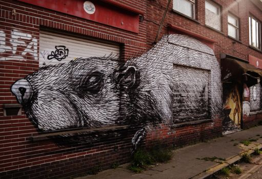 Wall Rat by PsychodelicMess