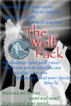 wolf pack id dec 11 by The-Wolf-Pack