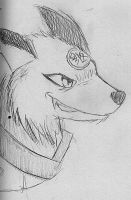 Youko Form (Anthro) by n3ko