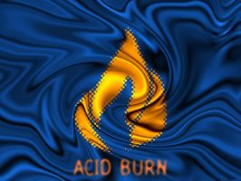 Acid Burn Hackers Desktop by webdreamy