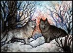 Canis Lupus by Sieskja