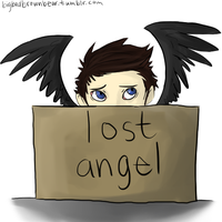 spn -- lost angel by locorooke
