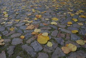 Street and leaves I by Dorian-Gray7