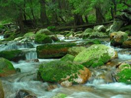 mountain stream by doko-stock