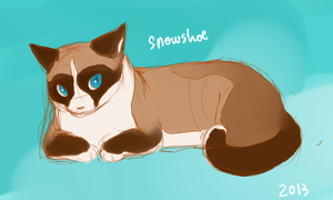 Re_Snowshoe by koru1243