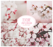 [STOP SHARE] PACK TEXTURE #2 - CHERRY BLOSSOM by yoonshin2k1