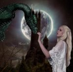GIRL MEETS DRAGON by KerensaW