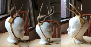 Last batch of antlers before Beltane by lupagreenwolf