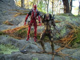 Predator wins by toyphototaker