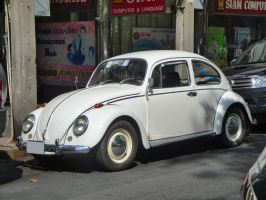 Old Beetle by zynos958