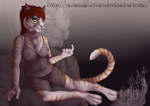 Commission for Plejman ver I by Manulfacture