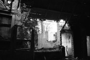 Decay by Patty1234