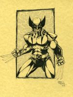 Wolverine markers by seanforney