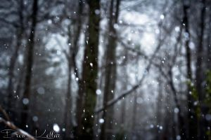 Beautiful Snow by pureoptic