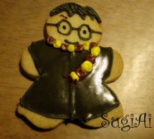 Harry Potter Cookie by SugiAi
