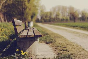 bokehlicious bench - sitzbank by thomassedl