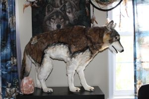 Hansa Lifesize Wolf by HowlingWolf711