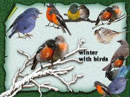 Winter With Birds by roula33