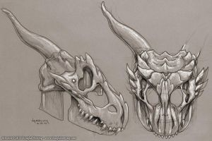 Dragonskull Helm Sketch 01 by Oberonsson