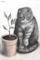 Cat and plant by ClaiRiruy
