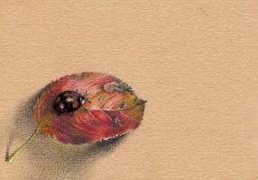Black ladybug on the leaf. ACEO by OlgaSternik