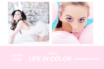 PSD 011 - LIFE IN COLOR by LittleDr3ams