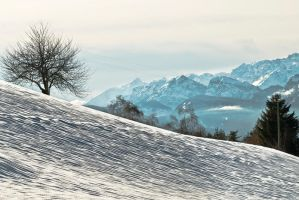 Snowy Brenta by stefeli-reloaded