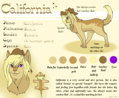 California Reference sheet by Duo-Dawn