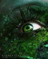 When Eye Meets Nature by emilindq